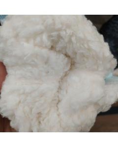 Meia algodão Moda Feminina bd